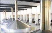 糖化和糊化系统/啤酒酿造设备