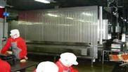 隧道式网带单体速冻机