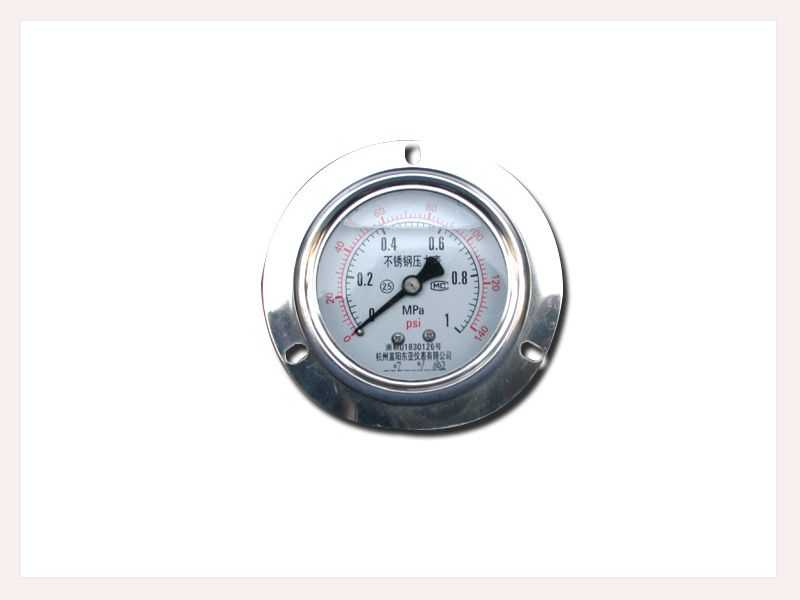 耐振不锈钢压力表(轴向带边型)