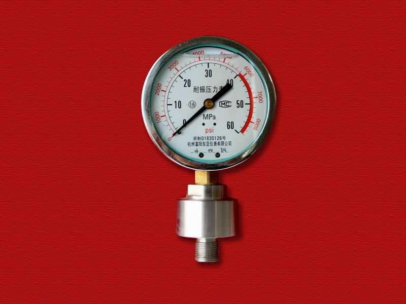 螺纹式耐震隔膜压力表