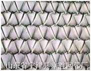 不锈钢输送网带 网链