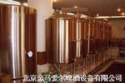 2009年财富平台鑫得爱尔自酿啤酒设备走进大陆厂家直销