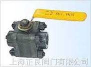 锻钢阀门|上海正良阀门厂