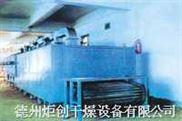 DWT网带式蔬菜干燥设备