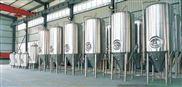 不锈钢啤酒酿造设备