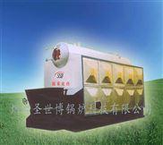 蓬莱CLSG1.05-85/60卧式燃煤链条蒸汽锅炉