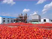 番茄醬生產設備之雙效真空濃縮鍋