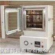 充氮烤箱/真空烤箱/真空高温试验机