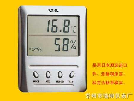WSB-2-H2温湿表,室内数字温湿度计,室内数字温湿度表,室内电子温湿度计,室内电子温湿度表