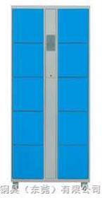 10门电子寄存柜电子锁寄存柜,条码寄存柜,投币锁寄存柜
