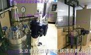 北京SL-212不锈钢高压反应釜