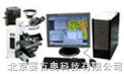 荧光显微成像分析系统/荧光显微镜