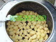 学校餐厅用小型土豆脱皮机/土豆清洗脱皮机/土豆脱皮机生产厂家