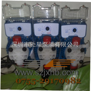 BB01-S2P4 AKL800 SEKO赛高计量泵总代理
