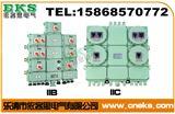 BDX51【供应优质BDX51防爆动力配电箱】BDX51防爆动力配电箱 铸铝防爆动力配电箱