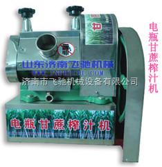 小型甘蔗榨汁机