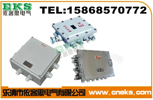 FJX/220V防水防尘防腐接线箱 铸铝接线箱 塑料接线箱 不锈钢接线箱