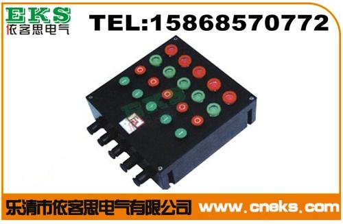 BXK8050-A6D6G防爆防腐控制箱 BXK8050-A4D4G防爆防腐按钮箱