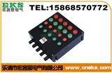 BXK8050BXK8050-A6D6G防爆防腐控制箱 BXK8050-A4D4G防爆防腐按钮箱