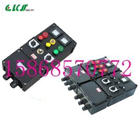 BXMX8050防爆防腐配电箱 12回路36A防爆防腐配电箱