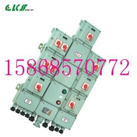 BXM51防爆配电箱 12回路36A380V带总开关防爆配电箱 WF1