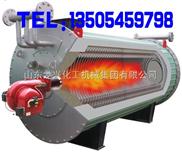 龙兴导热油炉  卧式燃油导热油炉 燃煤燃气导热油炉