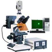 CX41-32RFL荧光显微镜-奥林巴斯