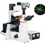 CKX41-F32FL荧光显微镜