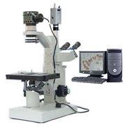 奧林巴斯倒置顯微鏡CX41-32C02