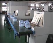 全自动热收缩膜包装机(DS-A400-IS)