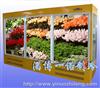 XHG-A(黄色)鲜花保鲜柜
