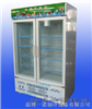 BXG-B双门冷藏展示柜