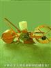 精密播种机、种子清选机、种子机械