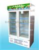 BXG-B3饮料展示柜、双门展示柜