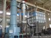 XSG供应硬脂酸铅专用闪蒸干燥机