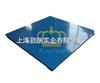 SCS杨浦区6吨电子磅