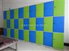 18门储物柜环保型储物柜|环保型更衣柜