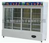 BXG-D2水果冷藏保鲜柜